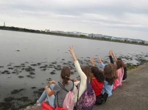 Aprende inglés, descubre otra cultura y vive la experiencia de tu vida en Dublín