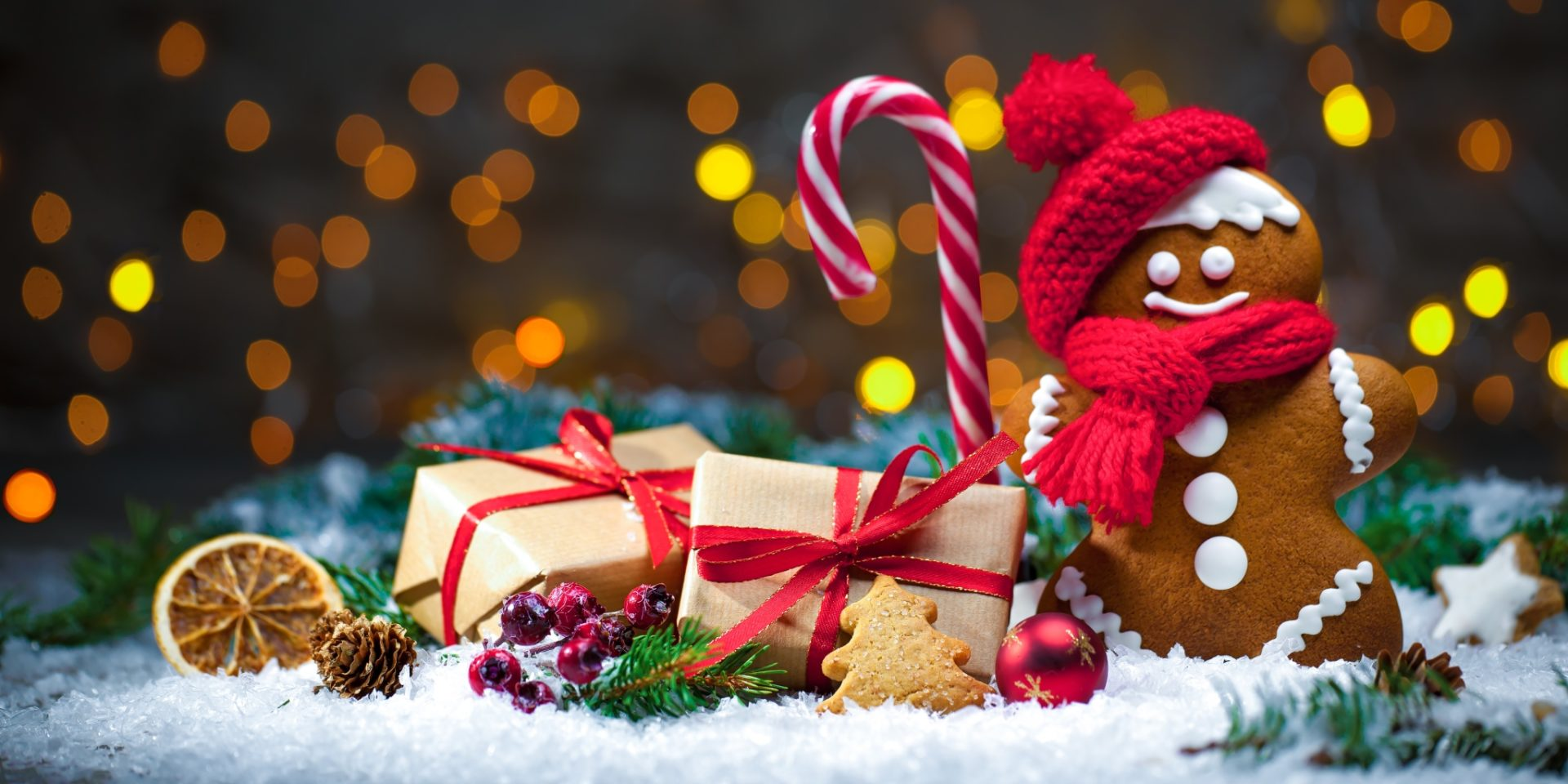Os deseamos una Feliz Navidad y un Próspero Año Nuevo! | CEIN